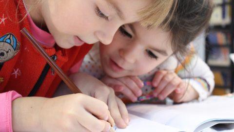 Strategia de elaborare a Legii Educației Naționale – Prof Florian Colceag